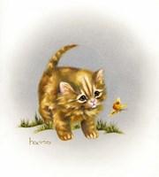 Fraidy Cat Fine Art Print