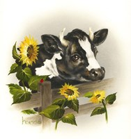 Bull & Sunflowers Fine Art Print