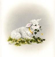 Little Lambsy Divey Fine Art Print