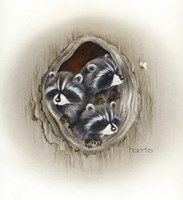 Raccoons In Hole Fine Art Print