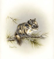 Tattle-Tail Baby Fine Art Print