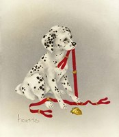 Dalmation 4- Hot Diggity Dog Fine Art Print