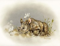 Rhino Baby Fine Art Print
