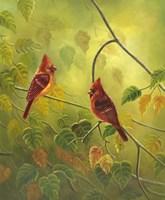 Autumn Cardinals Fine Art Print