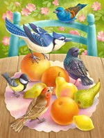 Birds And Fruits Fine Art Print