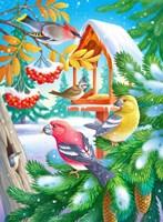 Winter Birds Fine Art Print