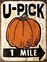 U-Pick Pumpkin Framed Print