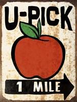U-Pick Apple Framed Print