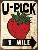 U-Pick Strawberry Framed Print