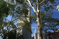 Flatiron Building With Trees Fine Art Print