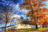 Autumn Barns Fine Art Print