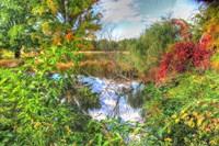 Autumn Pond Fine Art Print