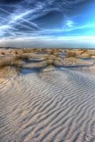 Dune Lines Vertical Fine Art Print