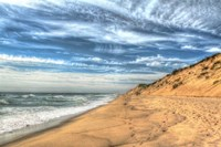 Footprints On Cape Cod Shore Fine Art Print