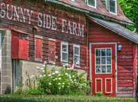 Farm Lettering 1 Fine Art Print