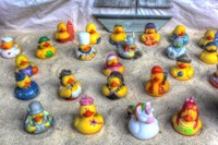 Rubber Duckies Fine Art Print
