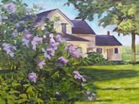 Lilac Bush Fine Art Print