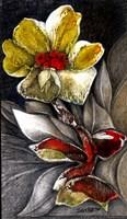 Stone Flower Fine Art Print