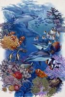 Reef Fine Art Print