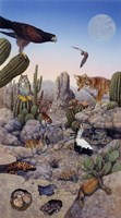 Desert Fine Art Print