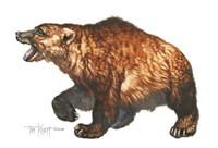 Cave Bear Fine Art Print