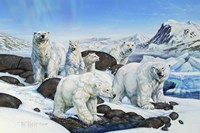 Polar Bears Fine Art Print