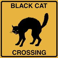 Black Cat Crossing Framed Print