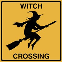 Witch Crossing Framed Print