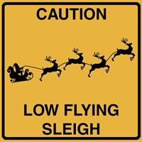 Low Flying Sleigh Fine Art Print