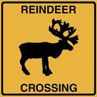 Reindeer Crossing Fine Art Print