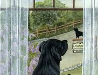 Labrador Inn Fine Art Print