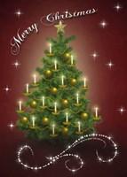 Christmas Tree 5 Fine Art Print