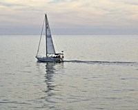 Sailboat A Fine Art Print