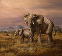Mother and Child (Elephants) Fine Art Print