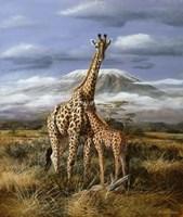 Kilimanjaro Pair Fine Art Print