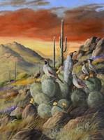 Desert Refuge Fine Art Print