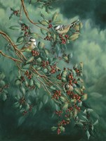 Holly And Chickadees Fine Art Print