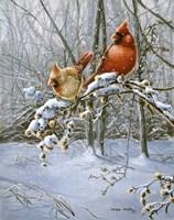 Snow Fire Fine Art Print