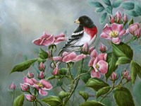 The Roses Fine Art Print