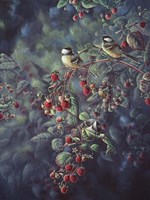Red Raspberries And Chickadees Fine Art Print