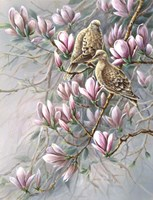 Doves And Magnoilas Fine Art Print
