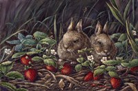 Strawberry Bunnies Fine Art Print