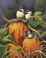 Chickadees And Pumpkins Fine Art Print