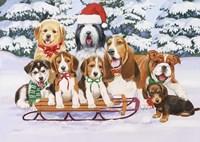 Sled Dogs Fine Art Print