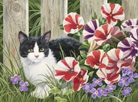 Minnie In the Petunias Fine Art Print