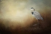 Heron At The Inlet Fine Art Print