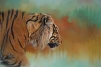 Bengal Energy Fine Art Print