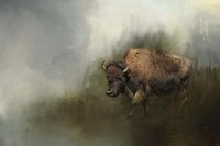 Bison After The Mud Bath Fine Art Print