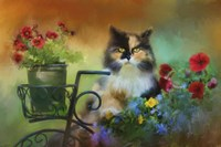 Calico In The Garden Fine Art Print