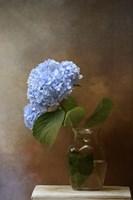 Blue Hydrangea In A Vase Fine Art Print